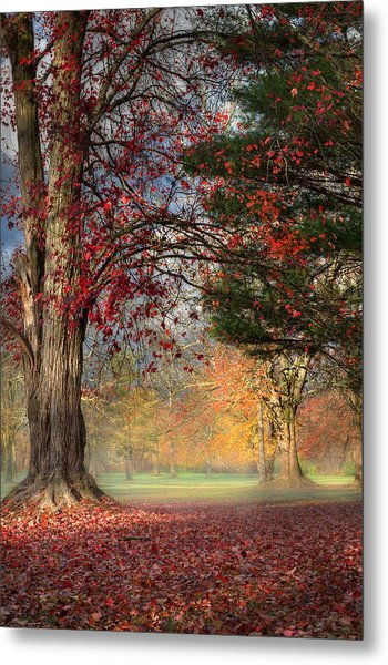 Early Morning In The Park Metal Print