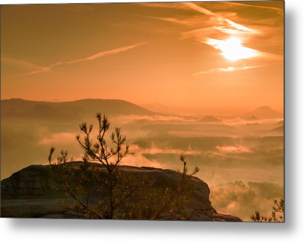 Early Morning On The Lilienstein Metal Print