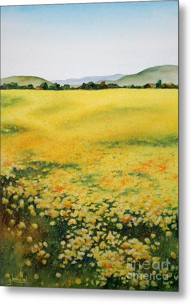 Early Spring Near Half Moon Bay Metal Print