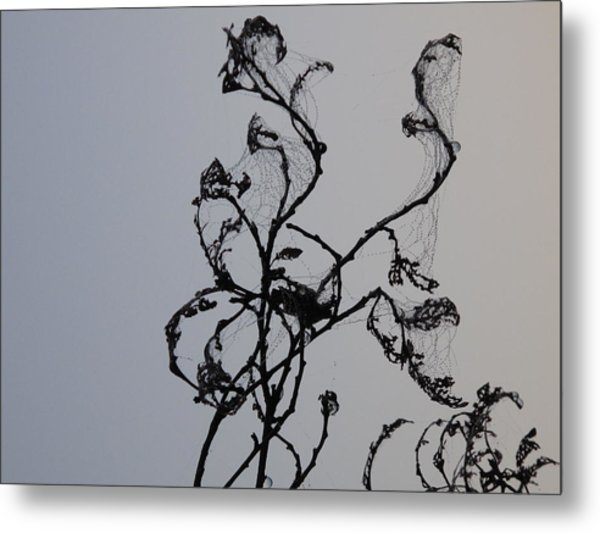 Earth's Sweat On Spiderweb Metal Print