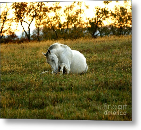Easier Lying Down Metal Print