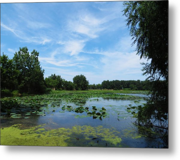 East Harbor State Park - Scenic Overlook Metal Print