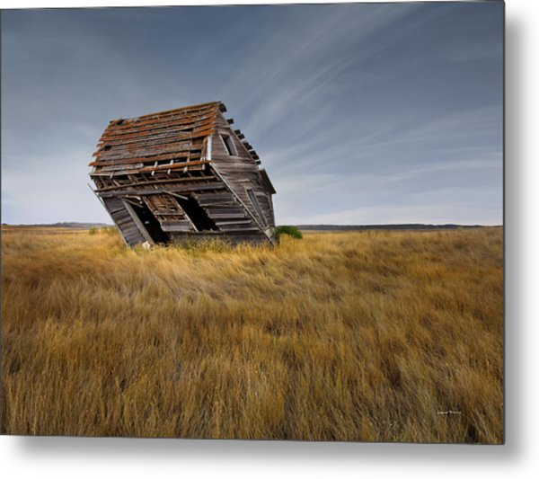East Montana Texture Metal Print by Leland D Howard