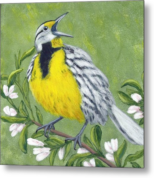 Eastern Meadowlark Metal Print