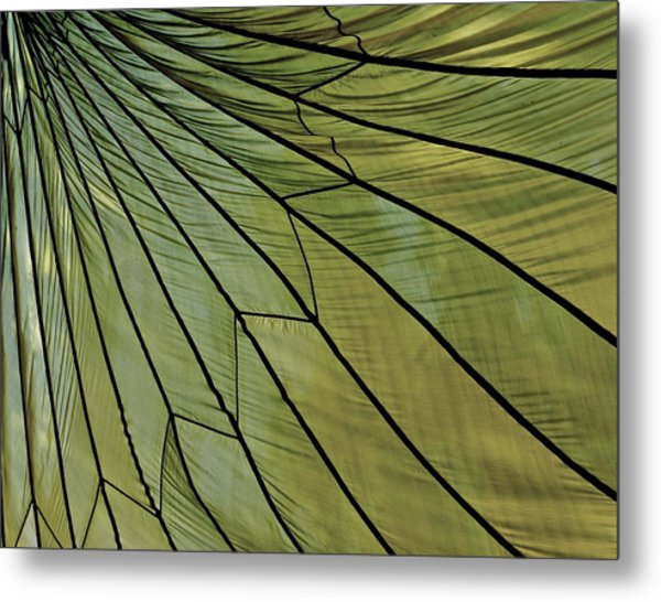 Easy- Breezy- Parachute Metal Print