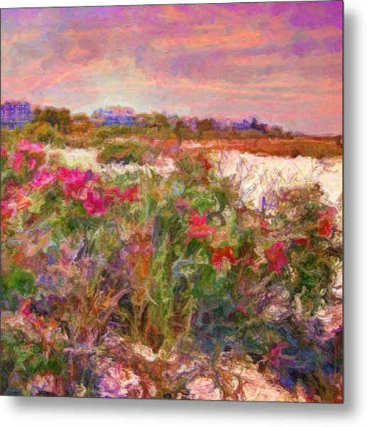 Edgartown Shoreline Roses - Square Metal Print