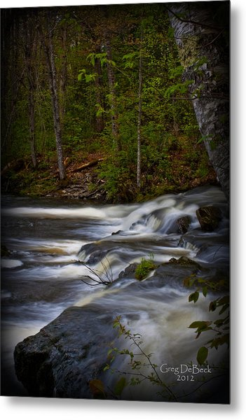 Edge Of The Stream Metal Print