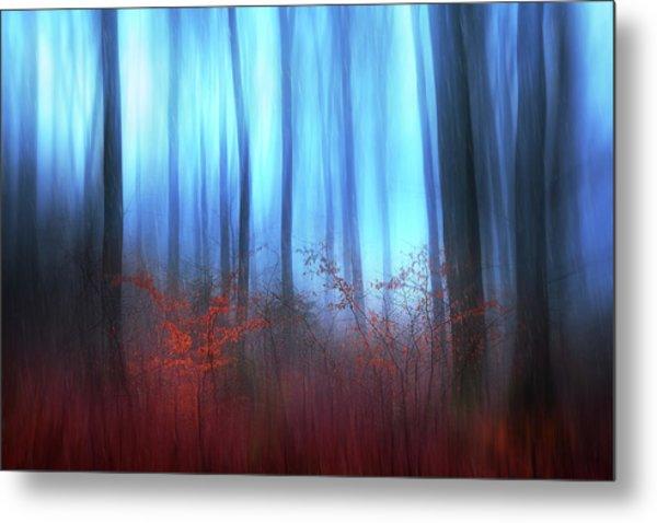 Eerie Woods Metal Print