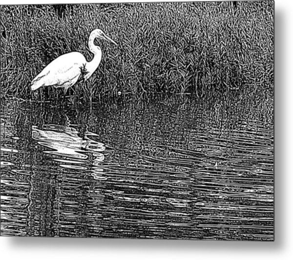 Egret In The Thicket Metal Print