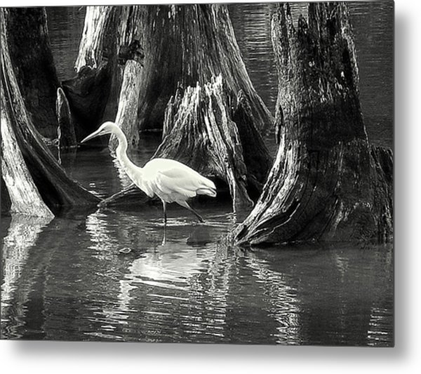 Egret Solitude Metal Print
