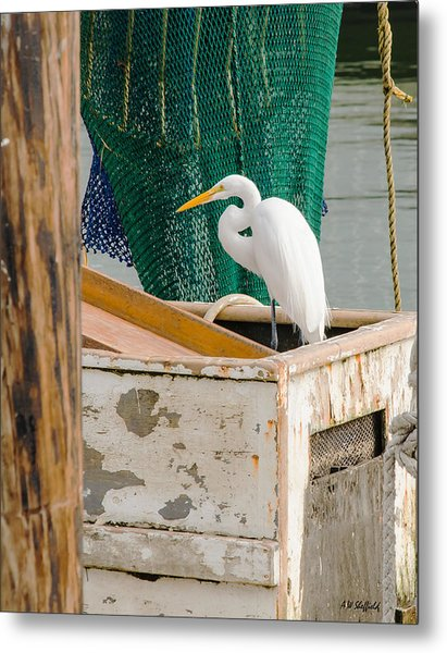 Egret With Fishing Net Metal Print