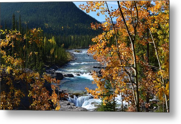 Elbow River View Metal Print
