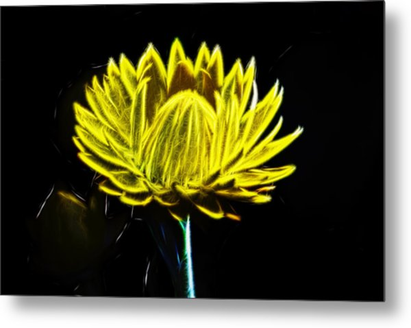 Electric Yellow Metal Print by Photographic Art by Russel Ray Photos