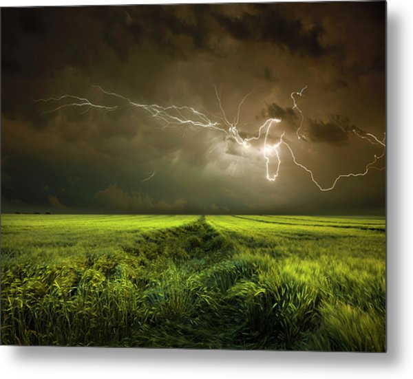Electrically In Summer Metal Print