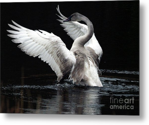 Elegance In Motion 2 Metal Print