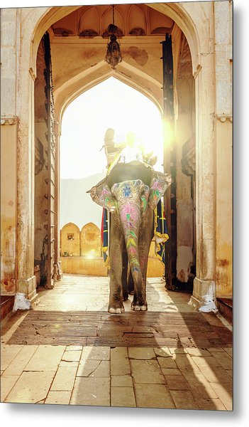 Elephant At Amber Palace Jaipur,india Metal Print by Mlenny