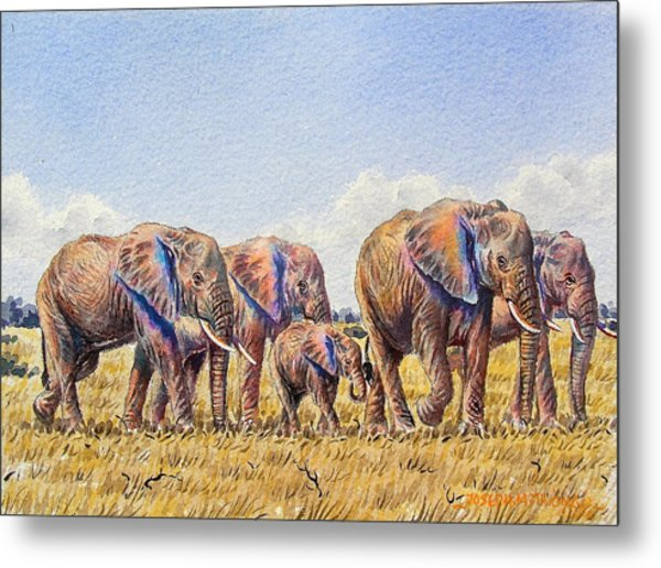 Elephants Walking Metal Print