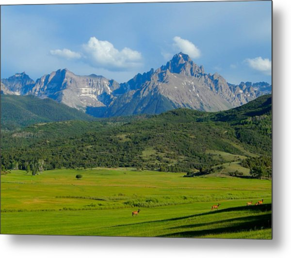Elk Below Mount Sneffels Metal Print