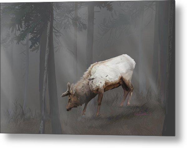 Elk In Velvet Fog Metal Print
