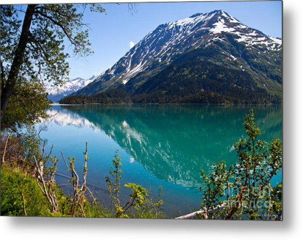 Emerald Reflections  Metal Print by Chris Heitstuman
