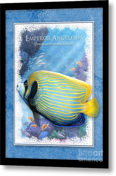 Emperor Angelfish Metal Print
