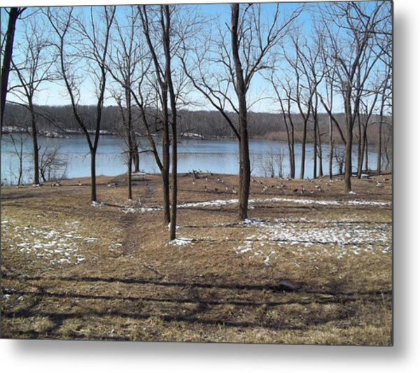 Englewood Reserve With Water Metal Print