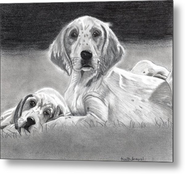 English Setter Puppies Dog Metal Print by Olde Time  Mercantile