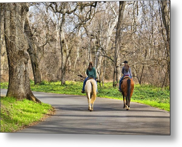 Enjoying The Scenery In Bidwell Park Metal Print
