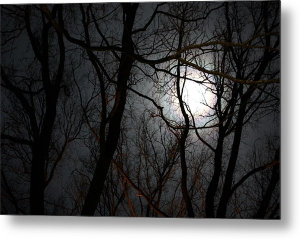 Entangled In The Moonlight Metal Print by Judy Powell