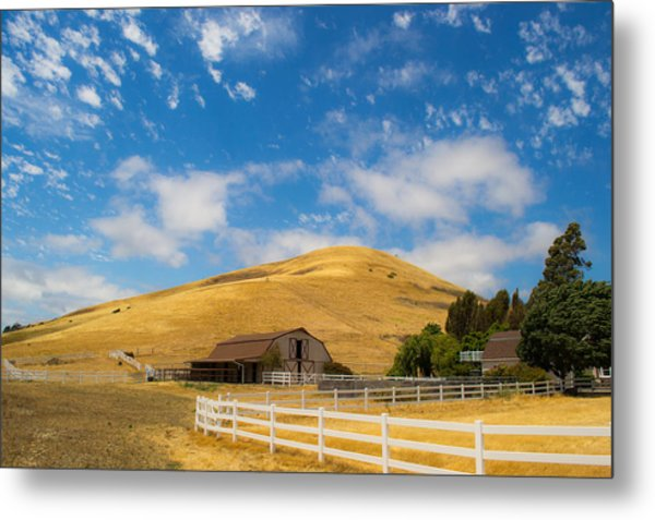Entering The Napa Valley Metal Print by Rima Biswas