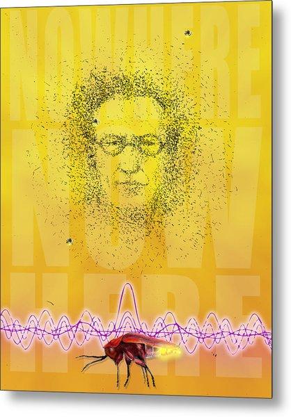 Erwin And The Quantum Firflies Metal Print