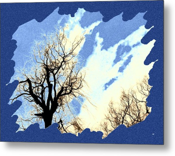 Essence Of Winter Metal Print
