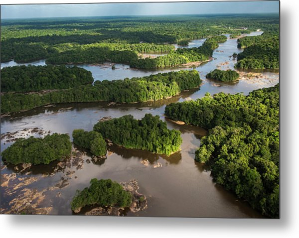 Essequibo River, Guyana Metal Print by Pete Oxford