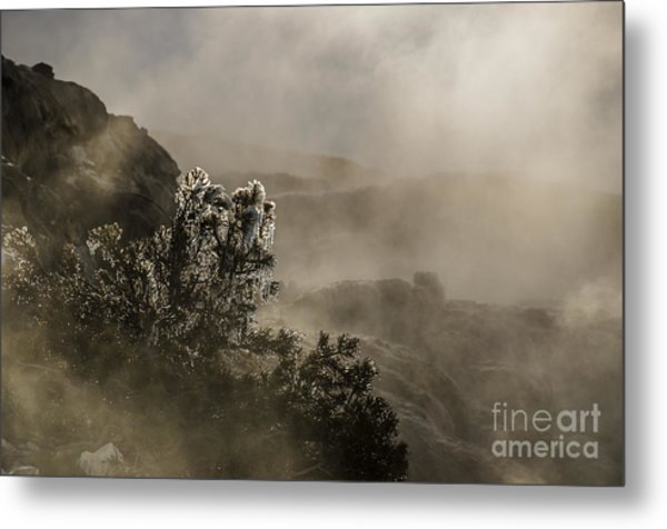 Ethereal Beauty Metal Print