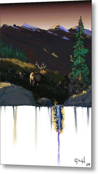 Evening Elk Metal Print