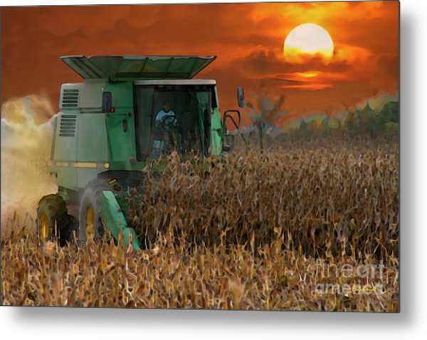 Evening Harvest Metal Print