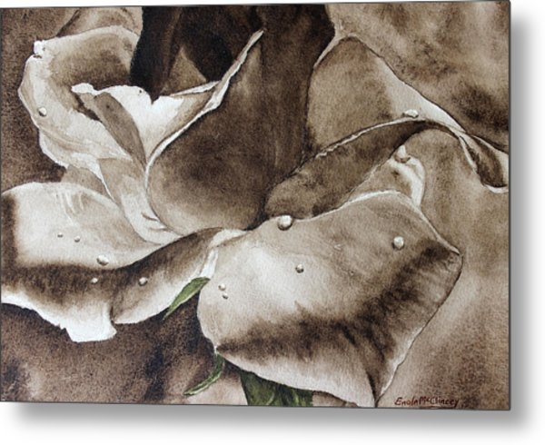 Evening Rose  Metal Print by Enola McClincey