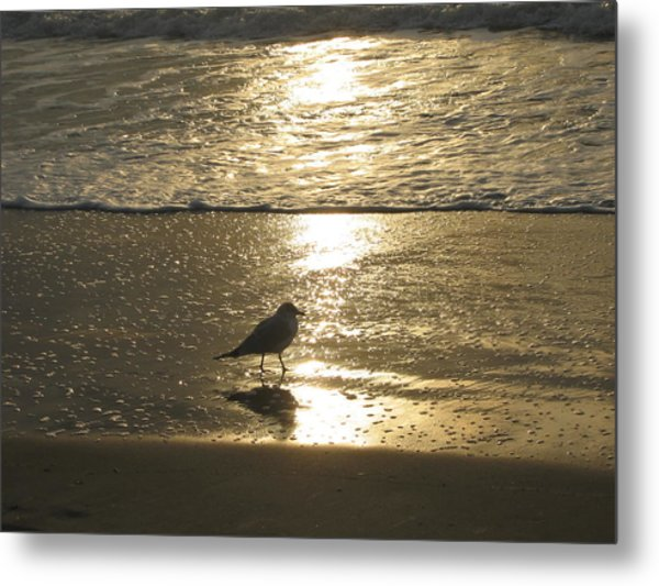 Evening Stroll For One Metal Print