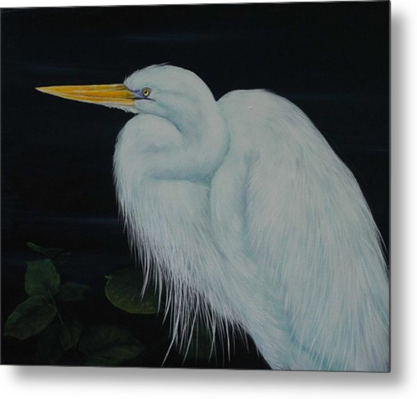 Everglades Angel Metal Print