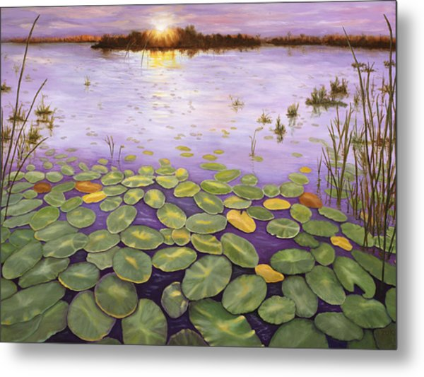 Everglades Evening Metal Print