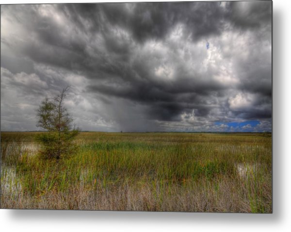 Everglades Storm Metal Print