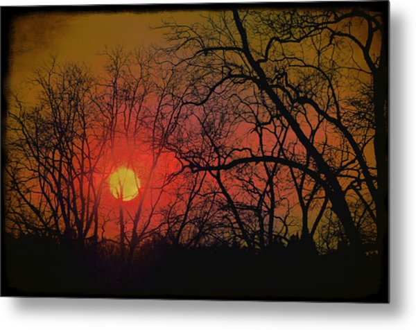 Every Night I Can Hear The Promise Of A Gentle Awakening Metal Print by Jan Amiss Photography