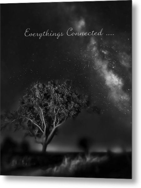 Everythings Connected Metal Print