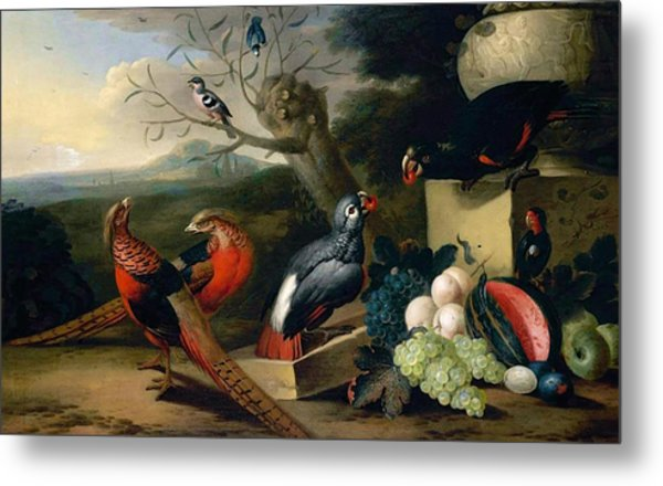 Exotic Birds Metal Print