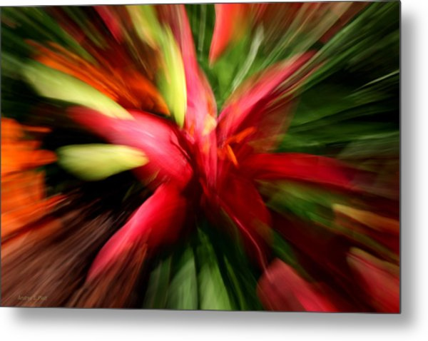 Exploding Lily Metal Print