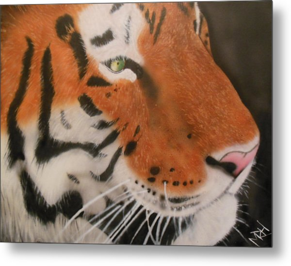 Eye Of A Tiger Metal Print by Michael Hall