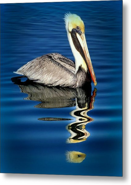 Eye Of Reflection Metal Print