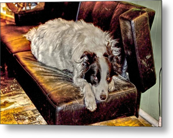 Eye Roll Metal Print