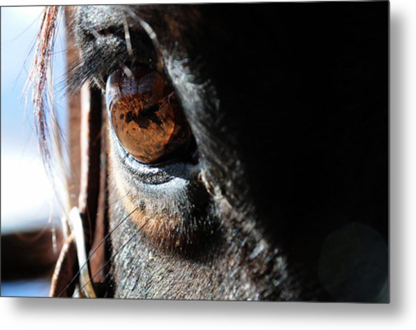 Eyeball Reflection Metal Print