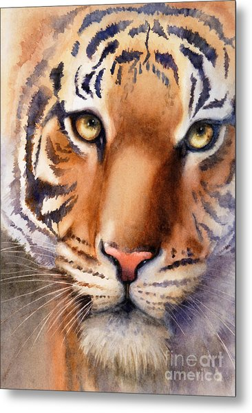 Eyes Of The Tiger Metal Print